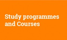 Study Programmes and Courses in Fine Art