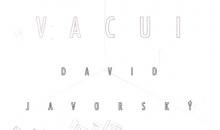 Výstava - David Javorský -VACUI